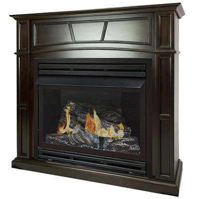 10 Best Gas Fireplaces And Inserts Reviewed Rated And Compared