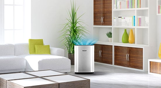 Air Purifier in the Living Room
